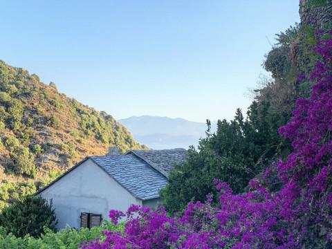 Trouvez des maisons à vendre en Corse
